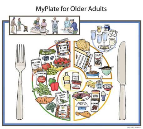 nutritious senior meals