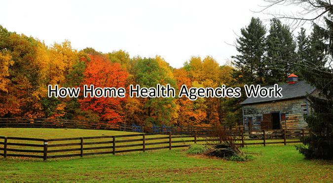how home health agencies work